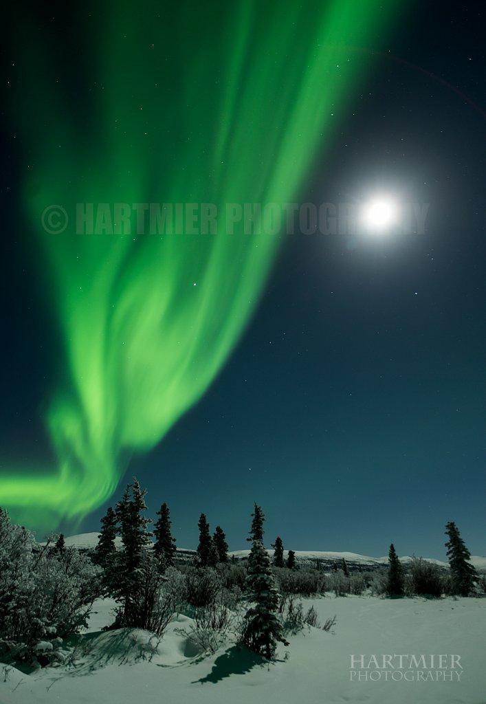 Full moon and Aurora